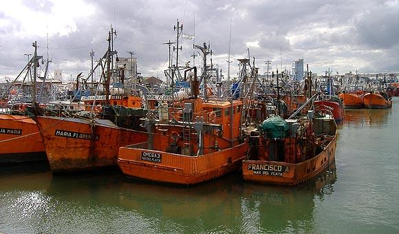 Clasificación y descripción de buques pesqueros argentinos