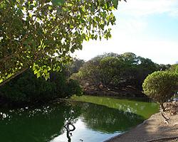 Lago De Los Cisnes Necochea Paseos Y Excursiones