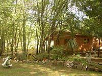 Cabañas Bosque Encantado