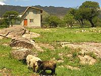 Casas Viejas - Casas de Campo