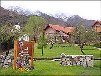 Cabañas Pehuén - Merlo